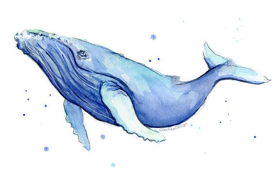 Humpback Whale Watercolor Print, Whale Art, Whale Painting, Blue ...