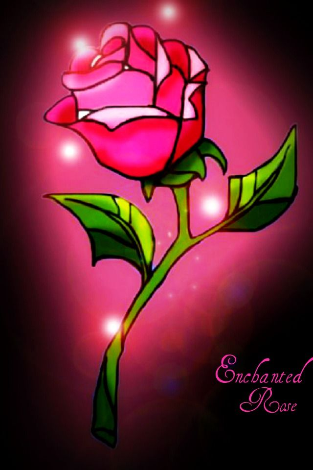 Beauty And The Beast Rose Enchanted Rose By Everlasting
