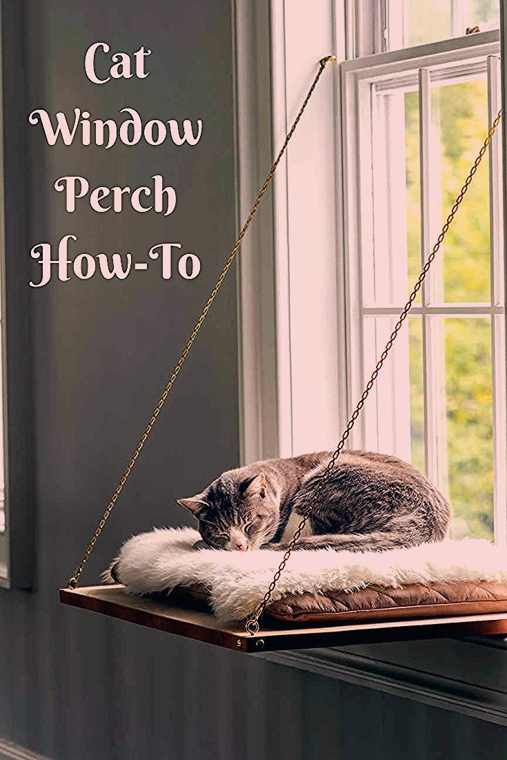 Cat Window Perch   Treat your feline by building her a place in the sun with a window seat that lets her scale new heights, settle in and watch the world (or nap!).  Get the how-to here.  #cats #DIY #pets #marthastewart