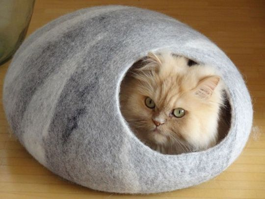 Luxuries Cat house with red poppy Felt cat cave Pet bedding Wool cat cave Cat bed Pet furniture MAKE TO ORDER