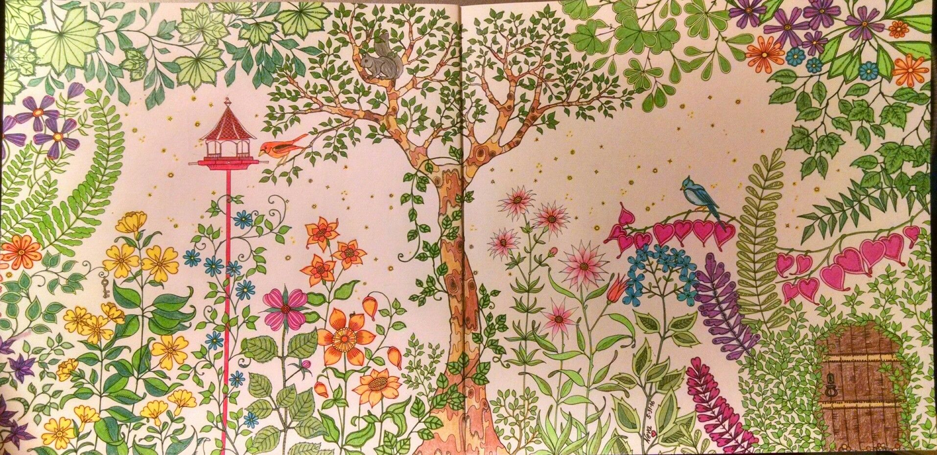 My Secret Garden Coloring Book Pretty Things Pinterest