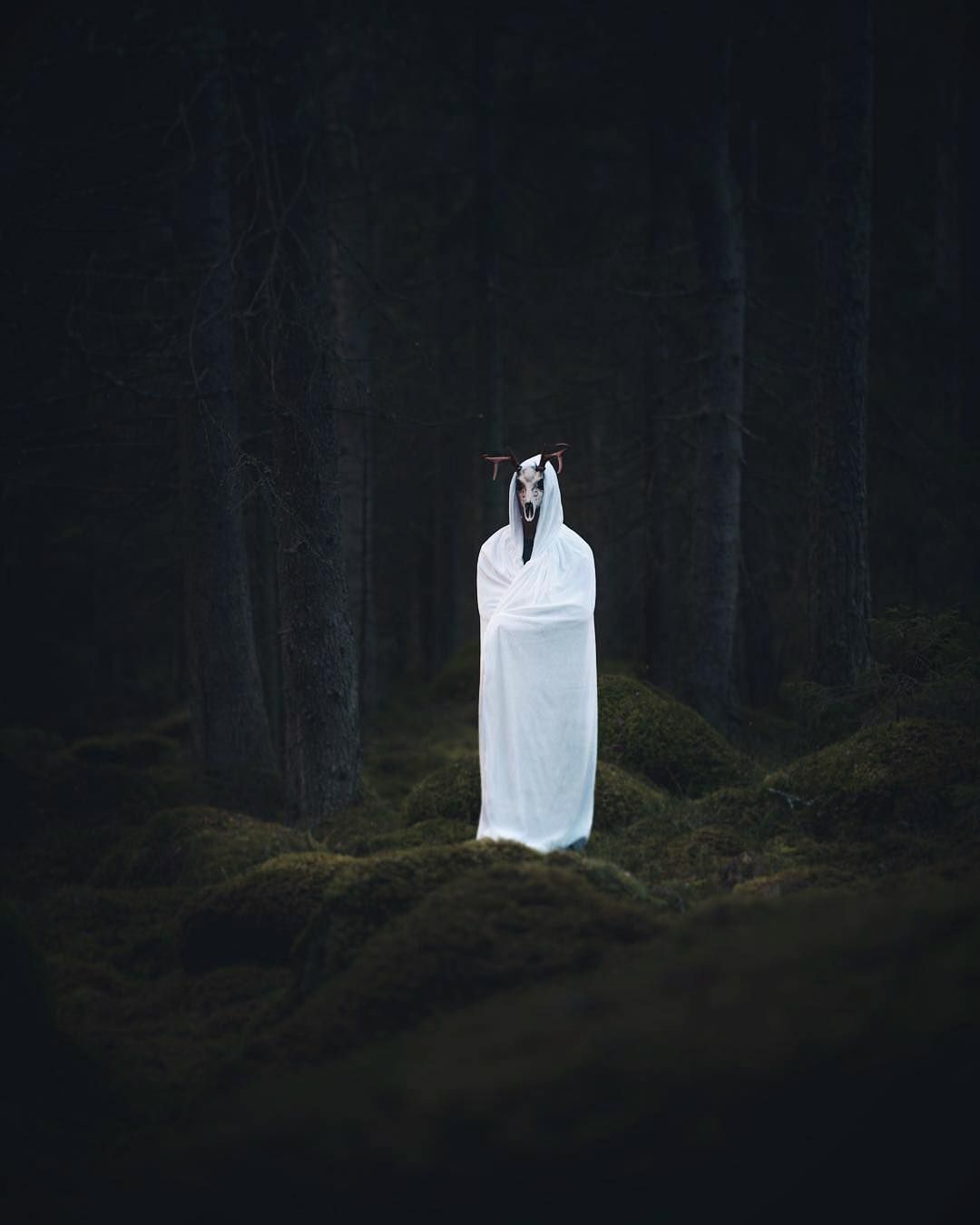 Nordic Creatures On Instagram And Into The Forest I Go