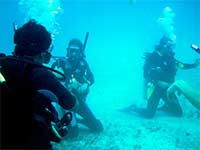 Open Water Course.  Learn what it takes to become a certified scuba diver