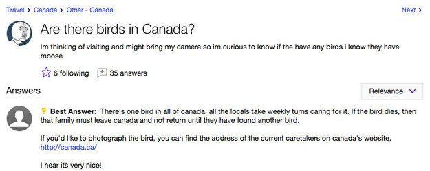 yahoo questions canada
