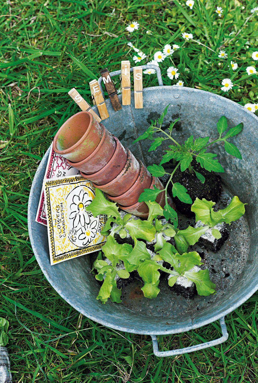10 DIY pour fabriquer des étiquettes de jardin