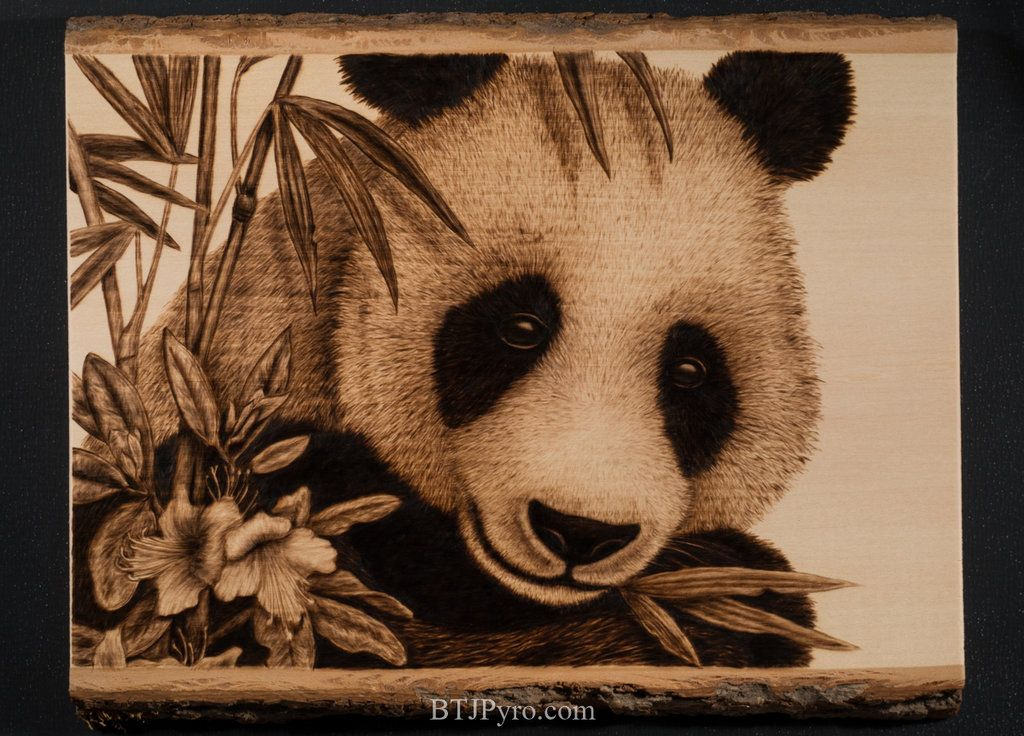 Pyrography portrait of a panda bear by brandojones on DeviantArt ...