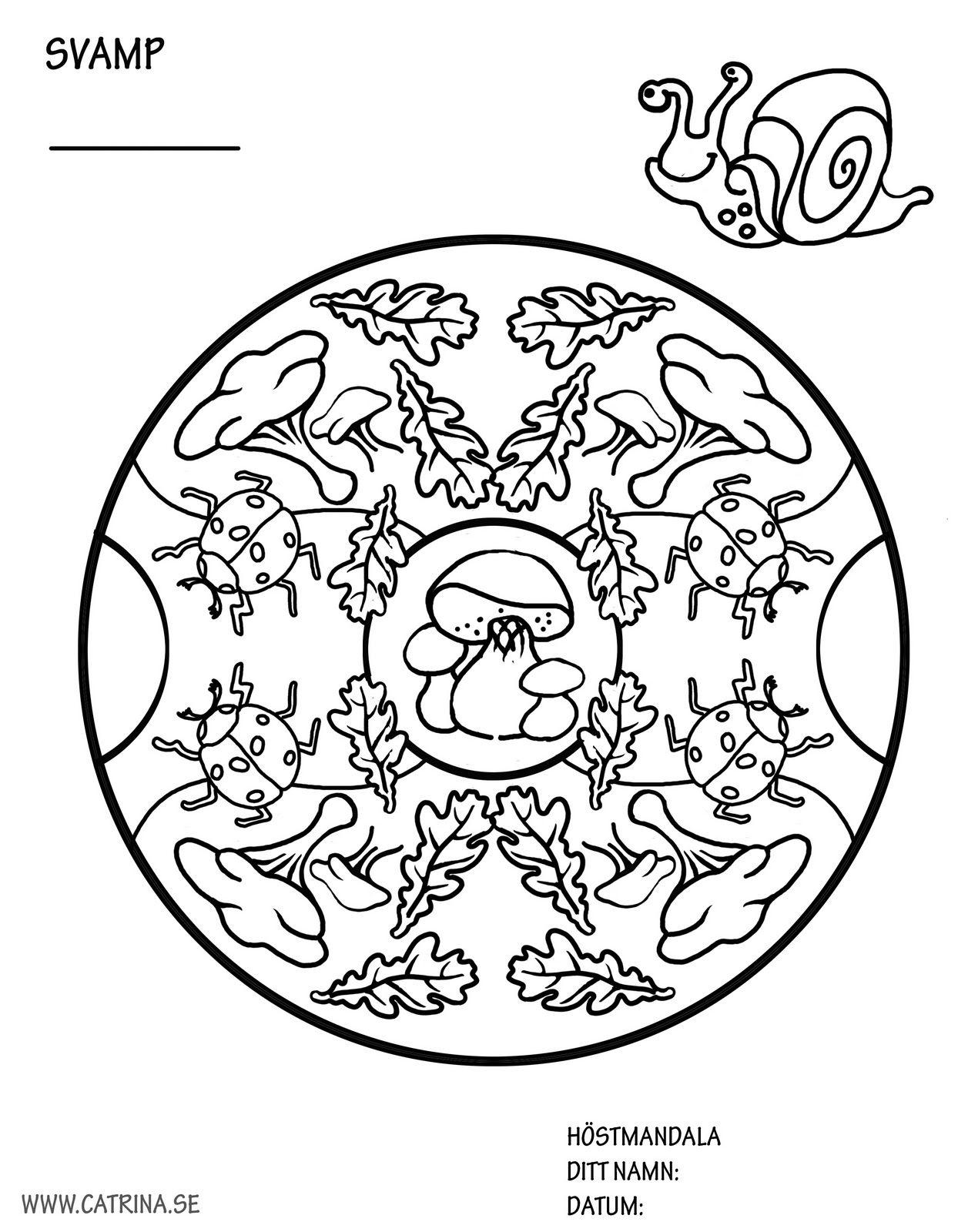 ausmalbild malvorlage löwenzahn