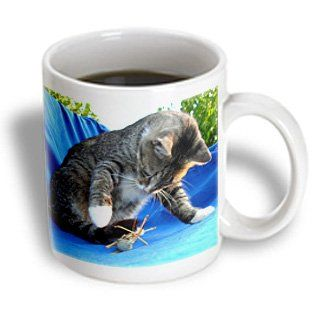 3dRose mug_21416_1 Cats Tabby Cat Ceramic Mug, 11-Ounce >> See this great image  : Cat mug