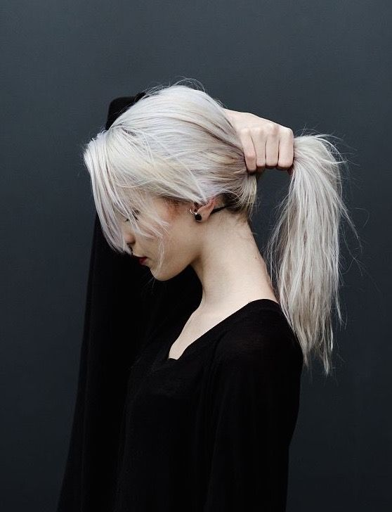Silver Ponytail