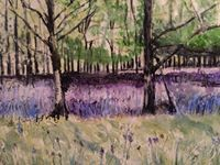 Bluebell Wood by Miranda