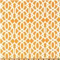 Designed by Paula Prass for Michael Miller Fabrics