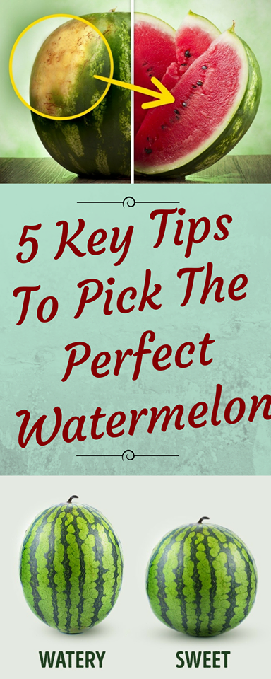 5 key tips to pick the perfect watermelon healthy magic 365