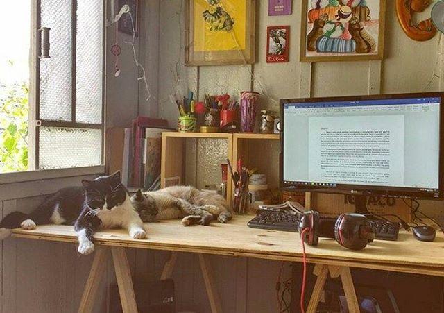 Inspiração decor home office