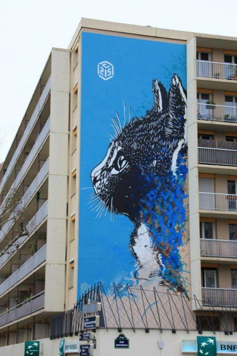 street art fresque gigantesque du street artiste c215 paris 13 street art dessin peinture. Black Bedroom Furniture Sets. Home Design Ideas