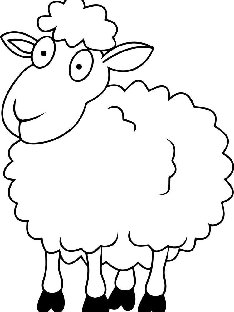 Sheep Sheep Face Coloring Pages For Boys