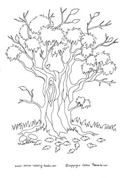 Autumn Leaves Coloring Pages Tree Coloring Page Coloring Pages