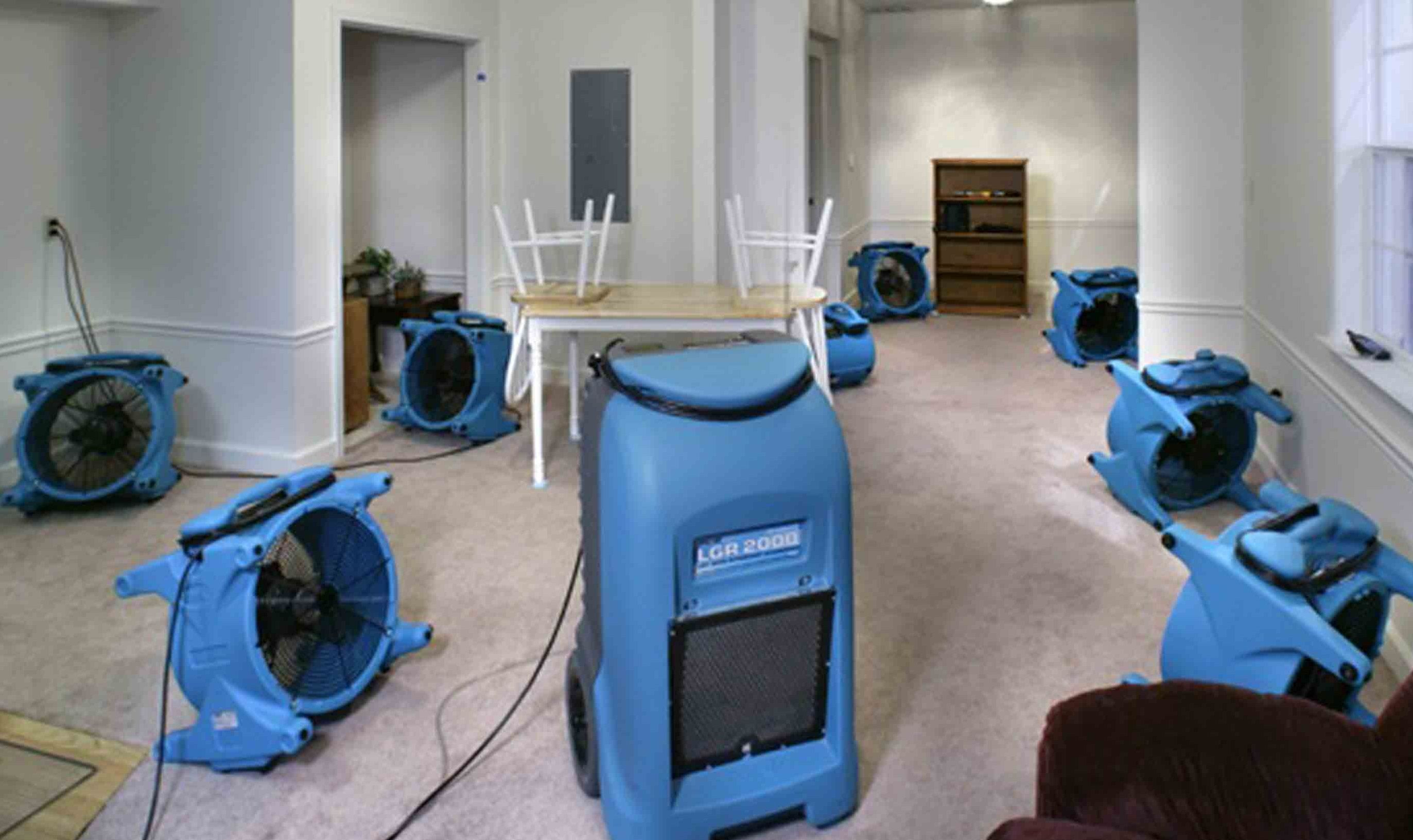 Water Damage Restoration Philadelphia http//biowashing