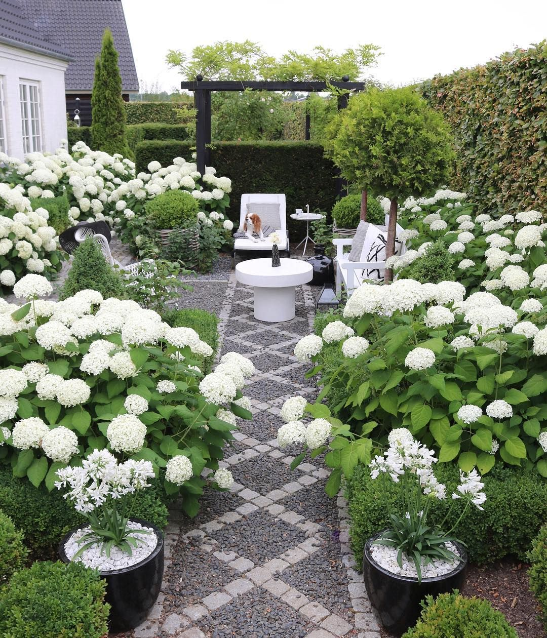 Gina On Instagram Sharing A 2018 Favorite From My Hydrangea Annabelle Garden In Full Bloom Enjoy Your Ev White Gardens Garden Landscape Design Dream Garden