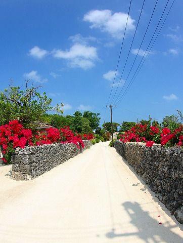鮮やかなブーゲンビリアが咲き乱れ、白い珊瑚のかけらで出来た小径。 ゆく人々は足を止め、自転車を降り、シャッターを切っていました。  竹富島ならではの風景です。 | 美しい風景, 沖縄, 美しい風景写真