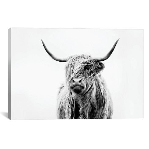 Highland Cow Print Target Google Search Highland Cow Art Cow Art Print Highland Cow Canvas