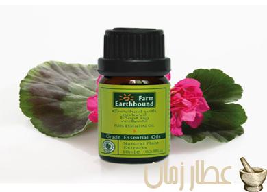 فوائد زيت عشبة إبرة الراعي العلاجية عطار زمان Nutrition Herbs Spices Herbs