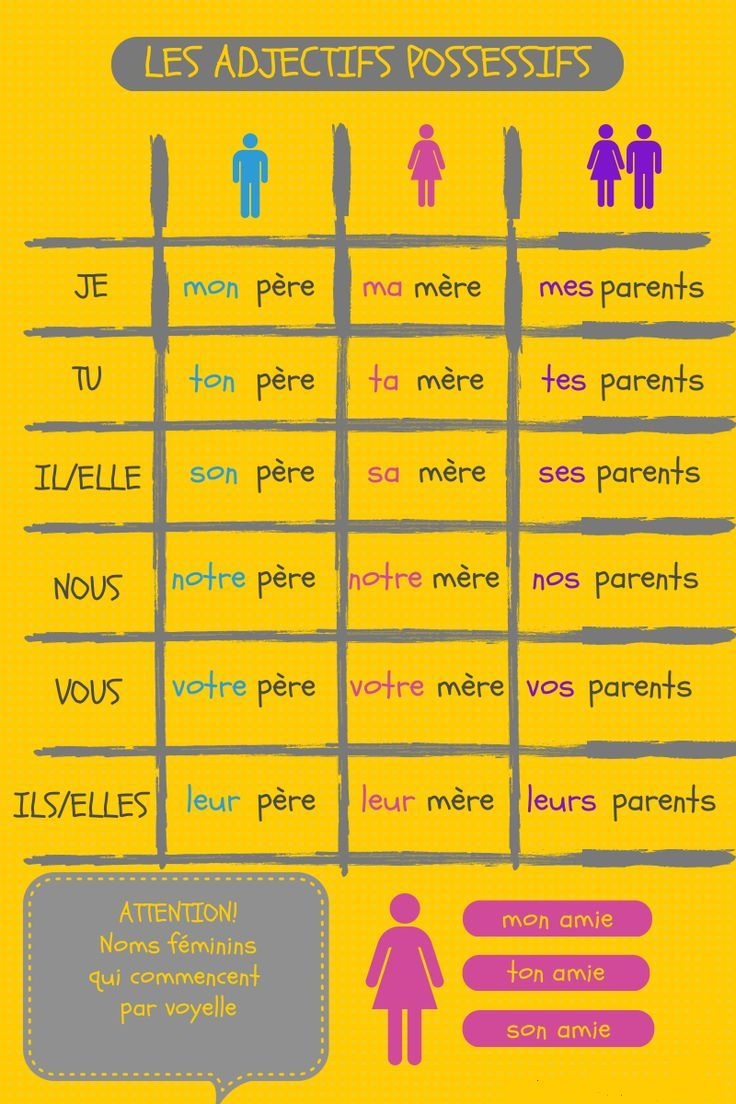Les adjectifs possessifs | French Grammar | Pinterest | französische ...