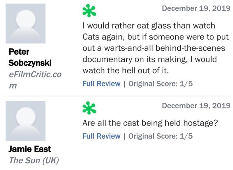 Twenty Five More Hilarious Cats Reviews From Traumatized Critics