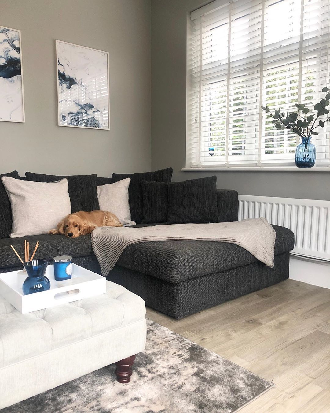 """@redrow_shaftesbury_newbuild on Instagram: """"Vinnie's favourite spot! We got this sofa second hand a few years ago for our old house and it's the comfiest sofa ever! The only problem…"""""""