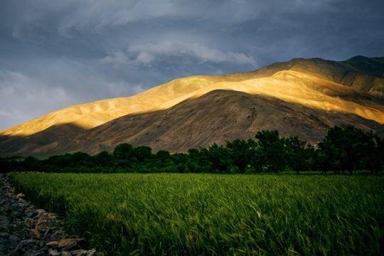 Various Nature Landscapes