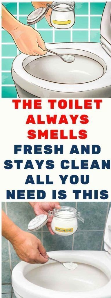 The Toilet Always Smells Fresh And Stays Clean. All You Need Is This The Toilet Always Smells Fresh And Stays Clean. All You Need Is This - Our Healthy Steps