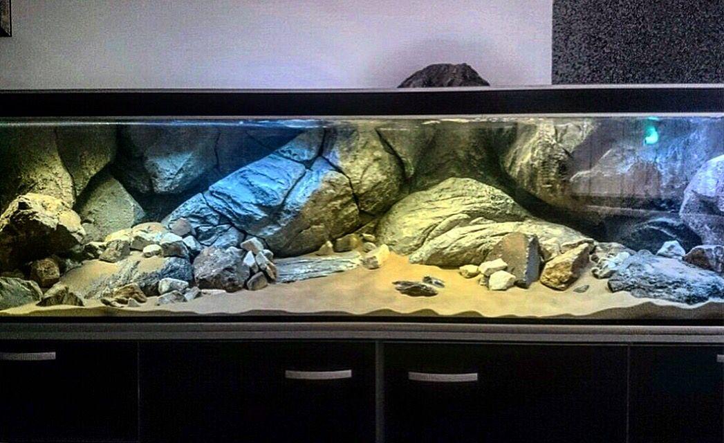 Aquadecor 3d Background For Aquarium Tropical Fish Tanks Fish Tank Stand Fish Tank