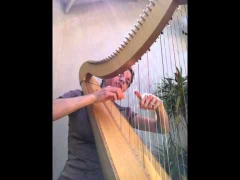 Harp Wedding Music Pachelbels Canon In D I Want To Learn The Sooo