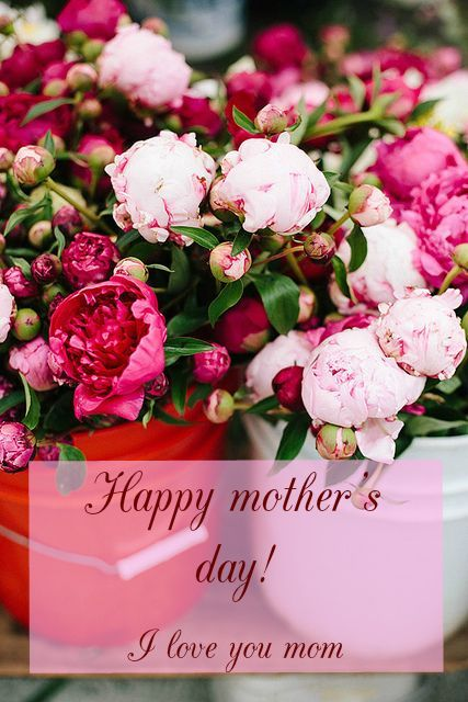 15 Great Cards For Mother S Day Flowers Pretty Flowers Beautiful Flowers