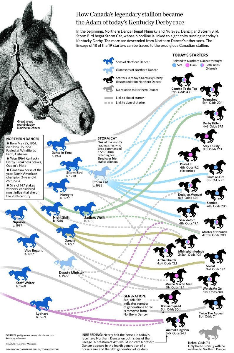 The Legacy Of Northern Dancer Horse Racing Saratoga Horse Racing Thoroughbred Horse