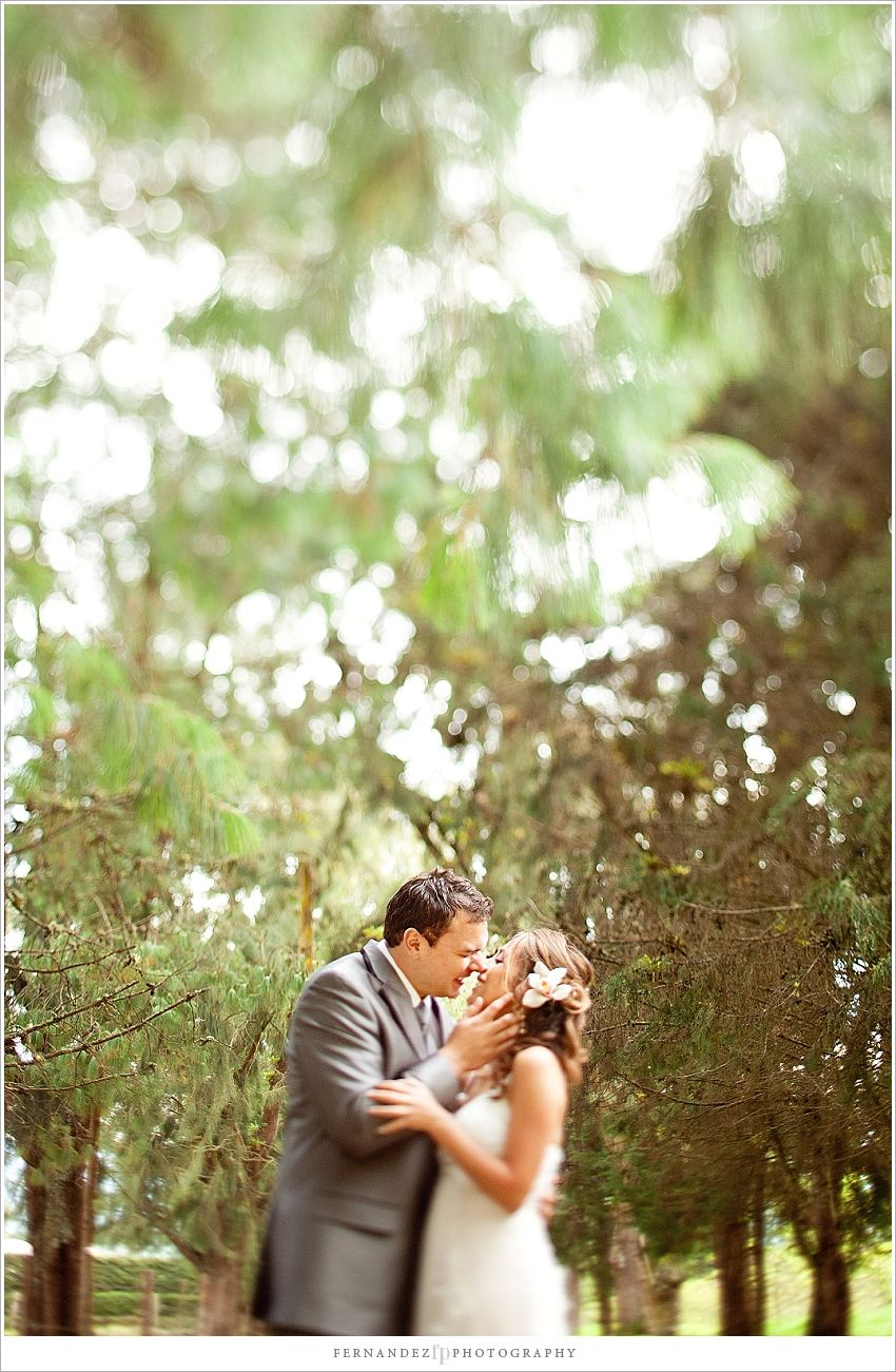 A kiss under the path of trees.    Bogota, Colombia #weddingday #kiss #weddingpictures #bogota #colombia #destinationwedding