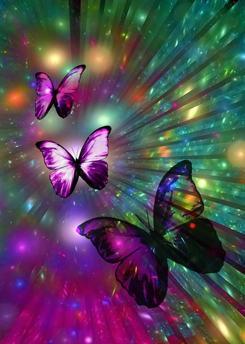 Faster shipping 5D DIY Diamond Painting animal butterfly   Etsy