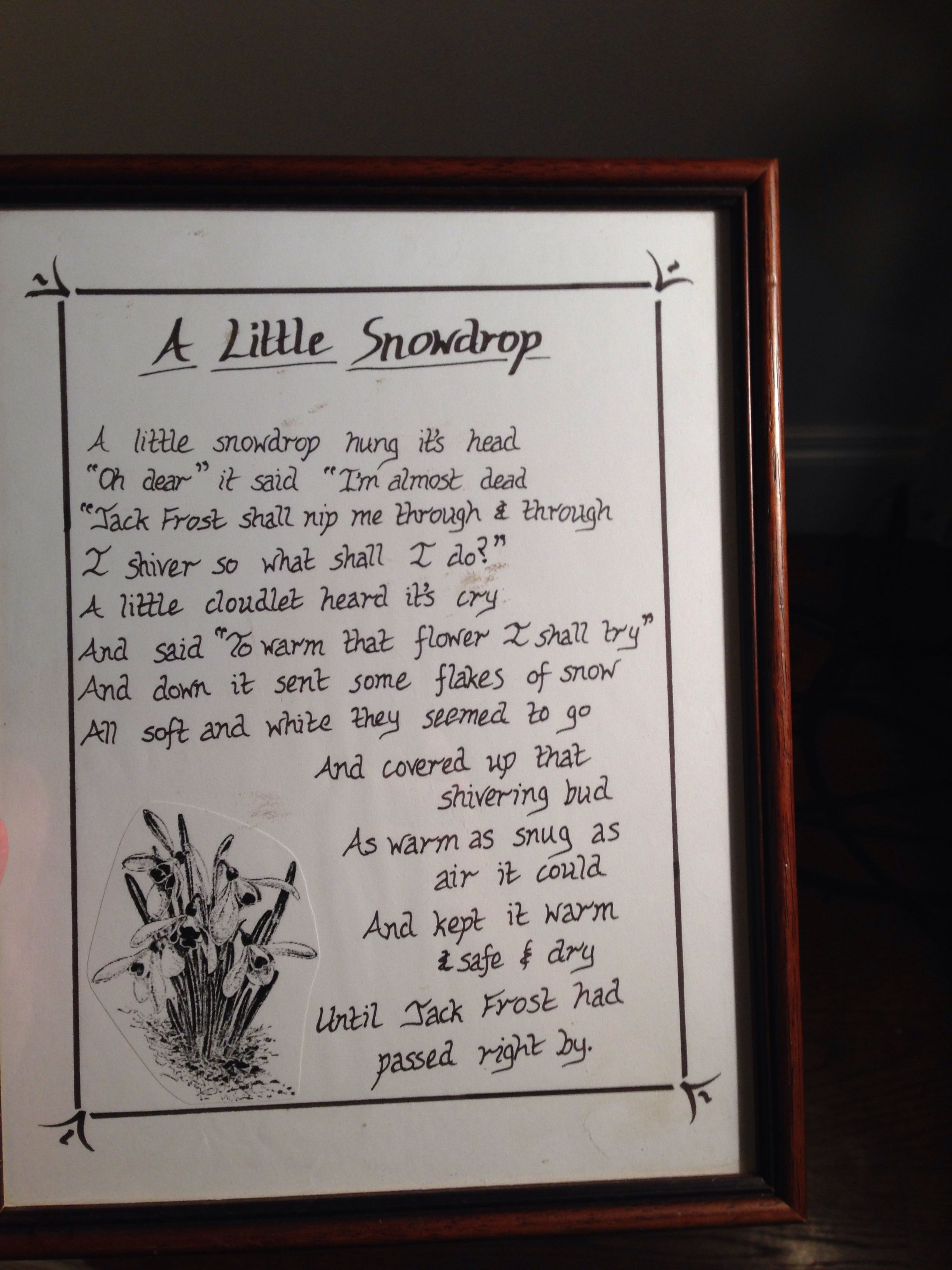 The Little Snowdrop Poems Journal Sayings