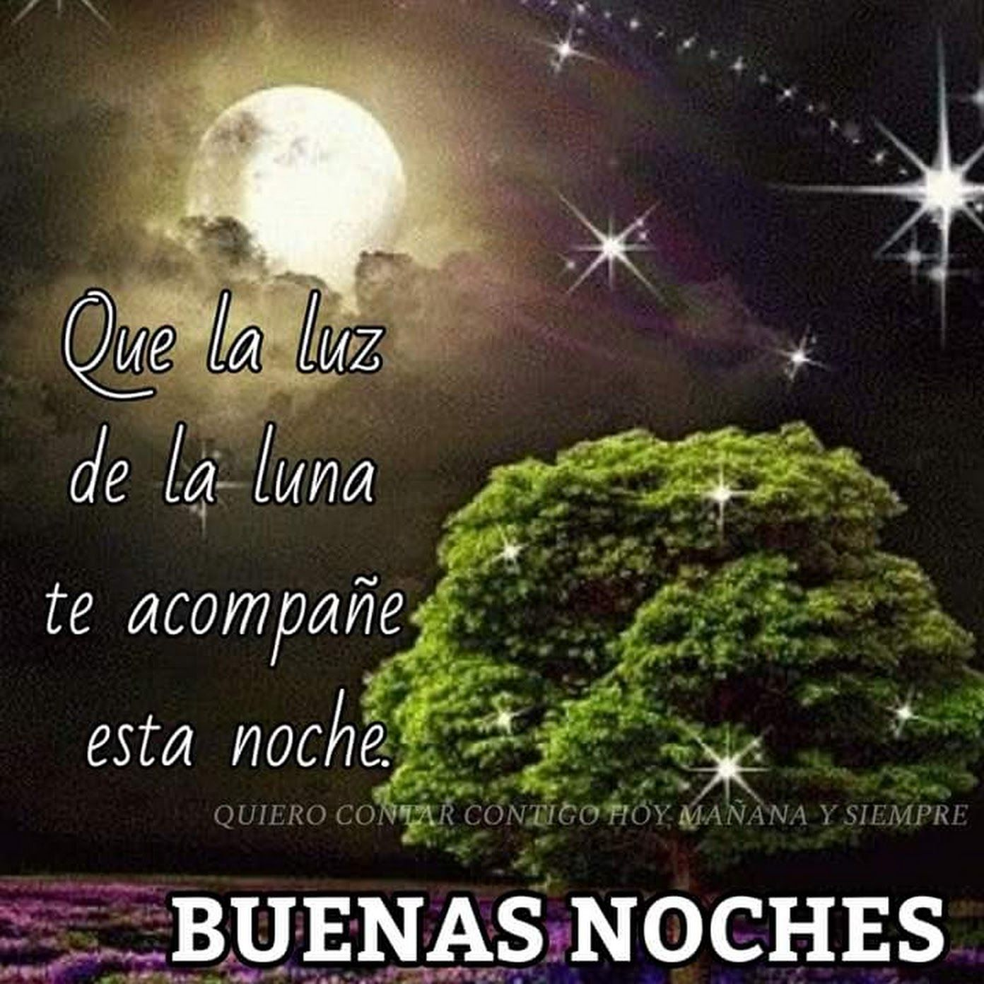 Sign In Fotos Buenas Noches Hermosas Imagenes De Buenas Noches Saludos De Buenas Noches
