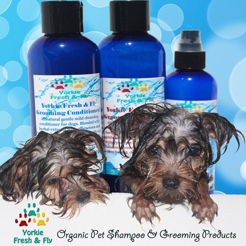 Best Yorkie Shampoo Natural Organic Pet Shampoo Yorkie Conditioner