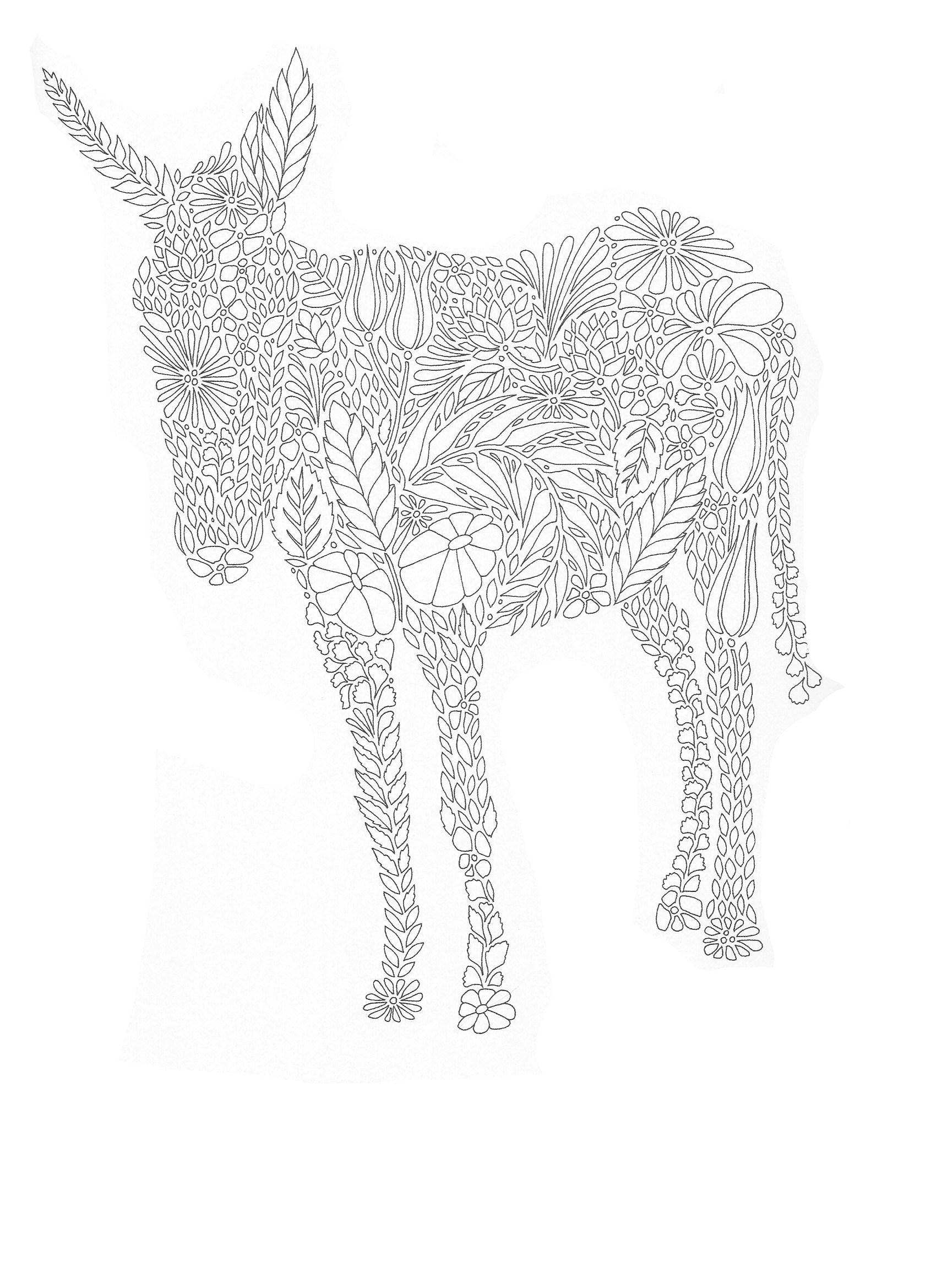 Fantastic Animals Donkey Millie Marotta Coloring Book Animal Coloring Pages Animal Coloring Books
