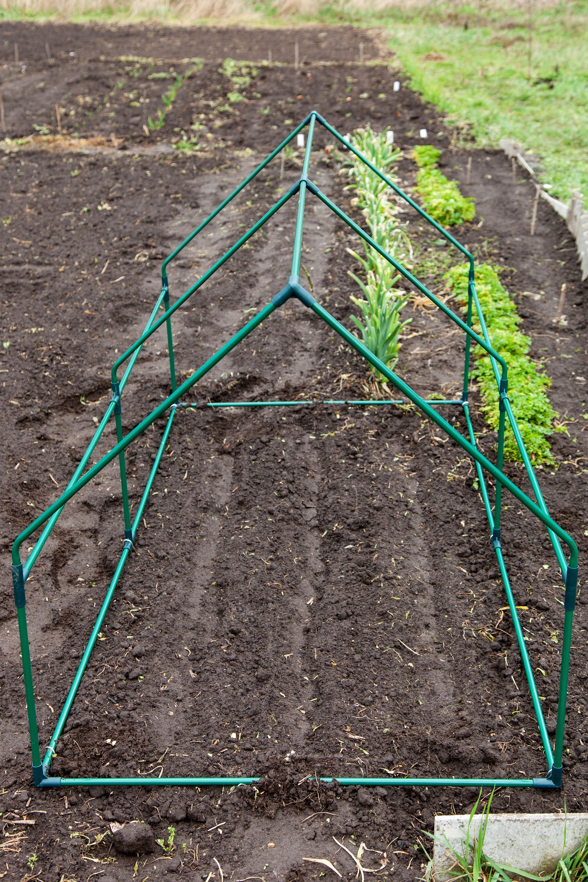 Vegetables You Can Start In August For A Full Fall Harvest 11 vegetables you can plant in August for a fall harvest. What to grow and how to keep your garden from freezing. All organic gardening ideas.11 vegetables you can plant in August for a fall harvest. What to grow and how to keep your garden from freezing. All organic gardening ideas.