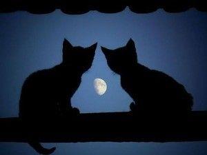 good moon !
