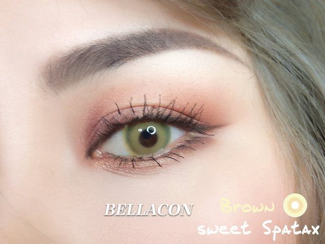 7e37b435ba6 14.50mm Bella Sweety Spatax Brown Cosmetic Contact Lenses -  16.99    contactlensdropshipping.com