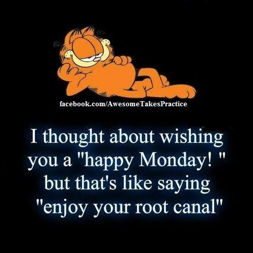 Cosmetic Dental Clinic Garfield Quotes Morning Quotes Funny Monday Quotes