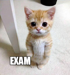 Exam dp for WhatsApp Download exam dp for Facebook
