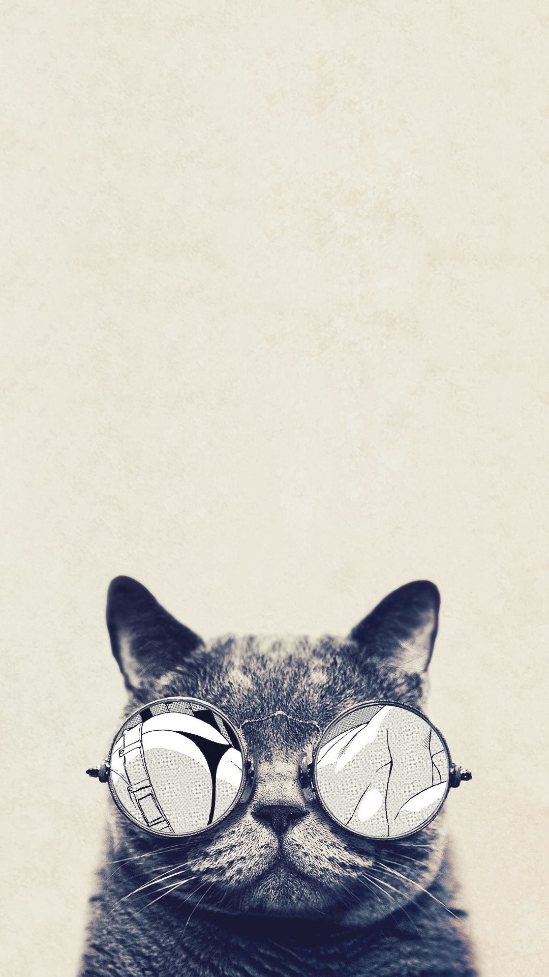 Funny Iphone Wallpaper Free To Download With Images Cat Phone