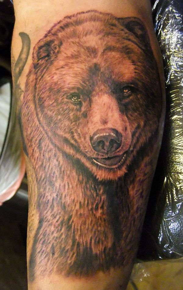 grizzly bear tattoos for men | ... More Like Firefly ...