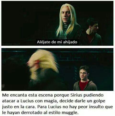 Vamos Sirius Libros De Harry Potter Memes De Harry Potter Fotos De Harry Potter