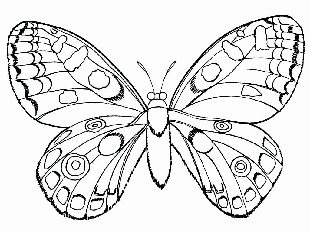 Pin By Kaitlyn Panton On Paint Night Tutorials Insect Coloring Pages Bug Coloring Pages Flower Coloring Pages