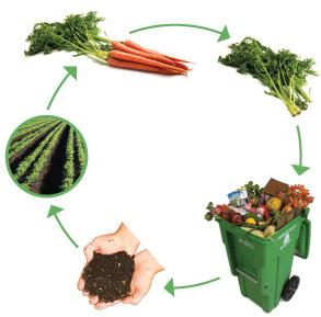 Cara Membuat Pupuk Kompos Dari Sampah Organik Pupuk Kompos Sampah Organik Ide Berkebun
